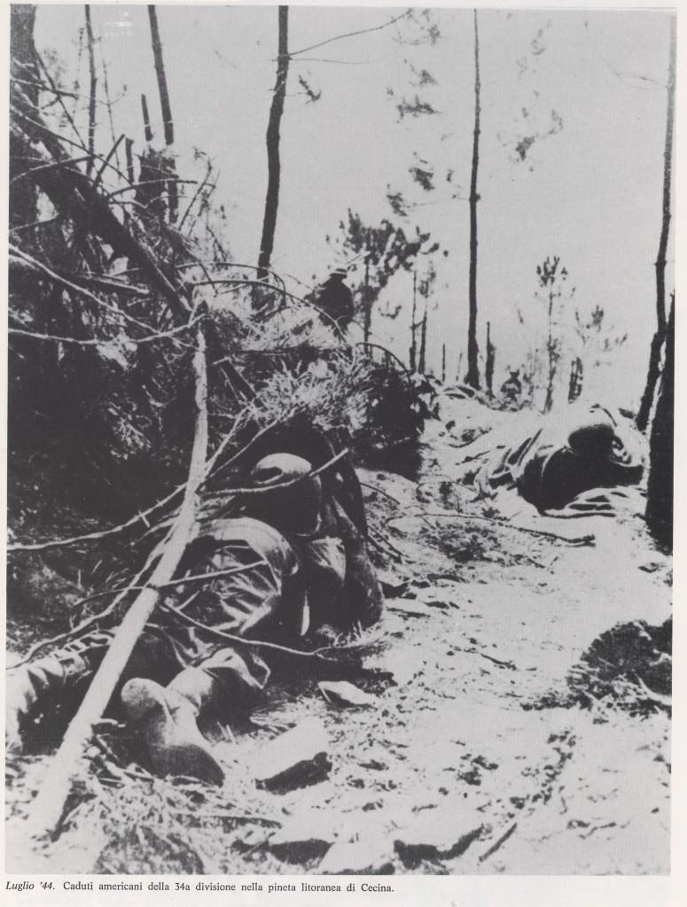 Caduti americani nella pineta di Cecina